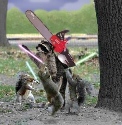 'squirrels' Tagged Entries from The Grand Saga of George ...